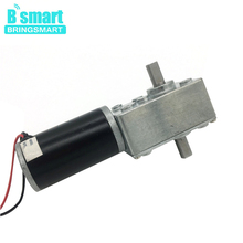 Bringsmart A58SW31ZYS 12V DC Worm Motor Reversed Geared Motor Double Shaft 1.6-70kg.cm High Torque Reducter Motor 24V Gear Motor