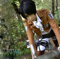 Attack on Titan Cosplay Shingeki no Kyojin Levi Ackerman Cosplay Costume Halloween Costumes for Women/Men