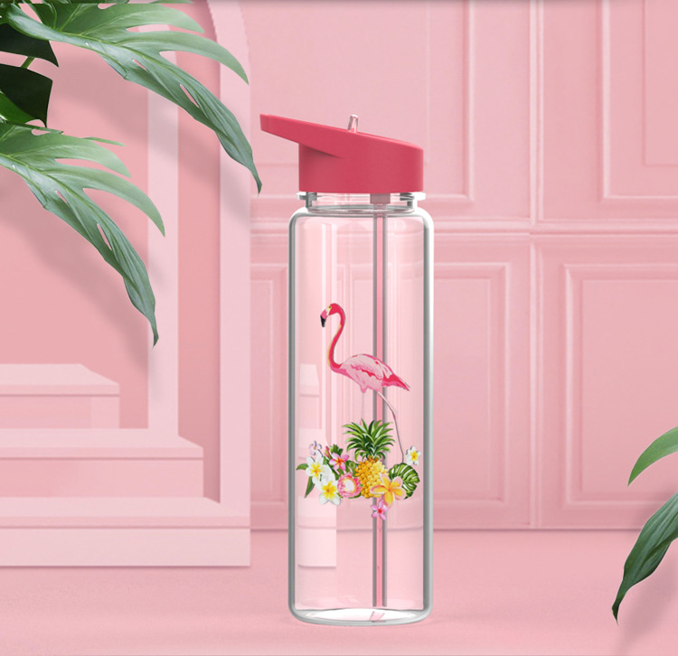 HTB1zl4eXoT1gK0jSZFhq6yAtVXaB Bpa Free 750ml 100%Tritan Sports Outdoor Straw Water Bottle With Flamingos Printing My Drink Juice Handle The Unicorn Kettle