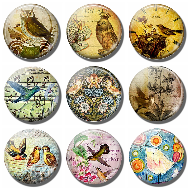 Bird Glass Dome Decorative Refrigerator Magnets Owl Sparrow 30 MM Fridge Magnet Note Holder Kitchen Accessories Home Decor in Fridge Magnets from Home Garden