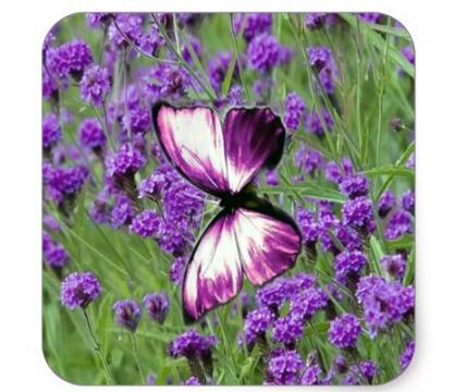 Купить с кэшбэком 1.5inch Purple_Butterfly_Lavender, Square Sticker