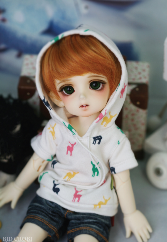 1/6 scale BJD lovely kid sweet cute boy CROBI Resin figure doll DIY Model Toys.Not included Clothes,shoes,wig