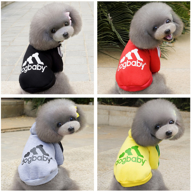 Warm Clothes For Small puppies