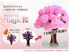 2017 14x11cm roz mare cresc Magic Paper Sakura Tree Japoneză Magic Cultivarea Copaci Desktop Desktop Cherry Blossom Crăciun 20PCS