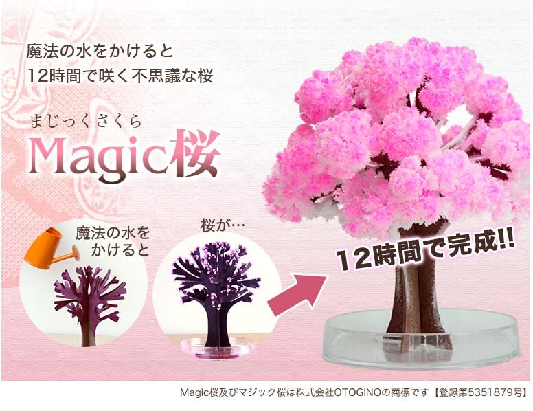 2017 14x11 cm Rosa Grande Crecer Magia de Papel de Sakura Árbol - Nuevos juguetes y juegos - foto 1