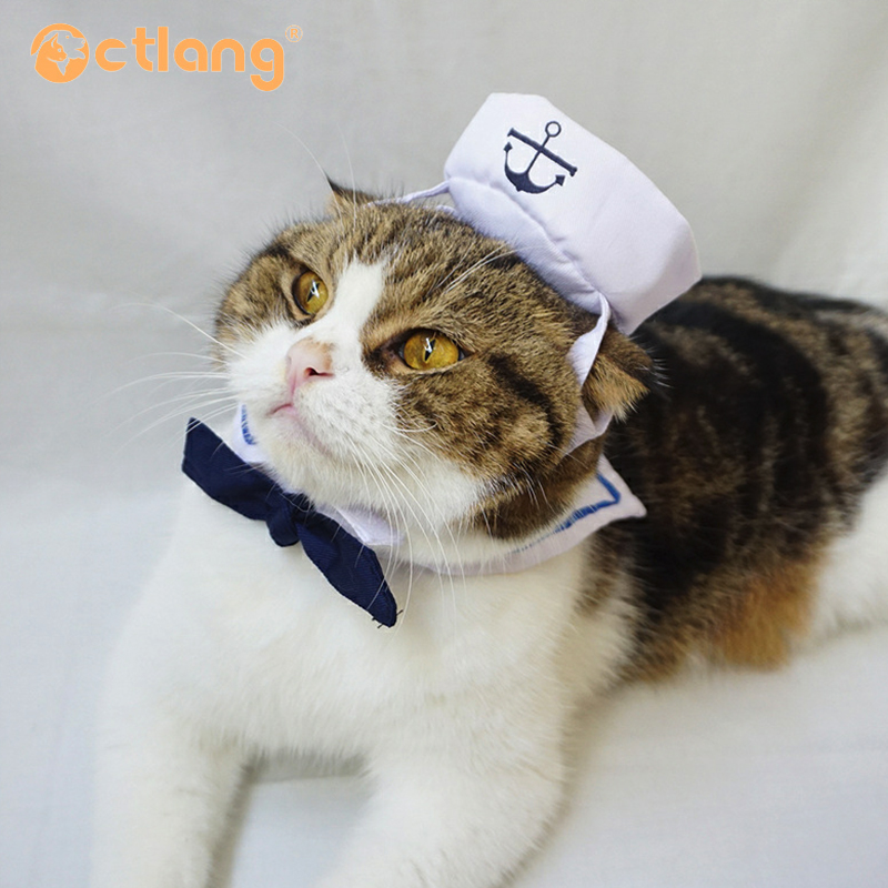 a0ad82aed90e6 Funny Cat Clothes Costume Sex Nurse Suit Clothing For Cat Cool Halloween  Costume Pet Clothes Suit For Cat XS 2XL 27S1-in Cat Clothing from Home &  Garden on ...