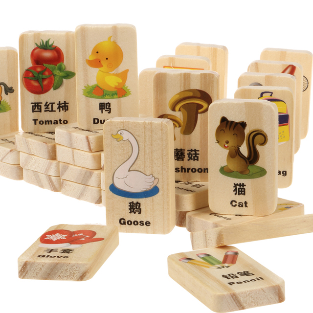 Candice Guo Knowledge Building Wood Block Wooden Toy Chinese
