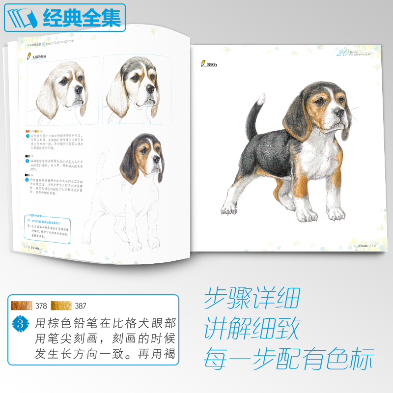 China draw animals book Suppliers