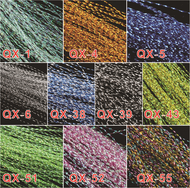 Maximumcatch 10 Bags 10Colors Fly Fishing Tying Crystal Flash String Hook Flashing Line Fly Tying Material Lure Making