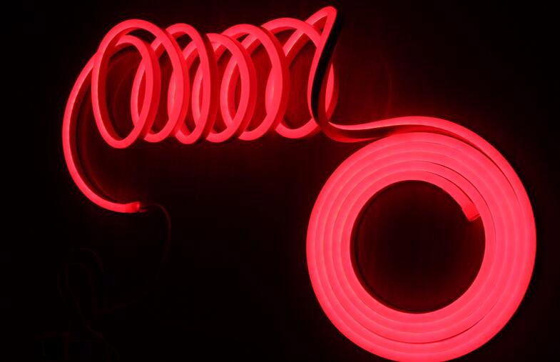 Chasing neon Flex (8)