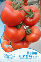 Original Pack 35 Seeds / Pack, Red tomato seeds, tomato organic fruits and vegetables balcony bonsai view fruit edible seeds