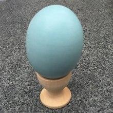 Красочные Ультра реалистичные DIY моделирование Деревянное яйцо твердой древесины ручная роспись Doodle Ege дом игрушка для детей