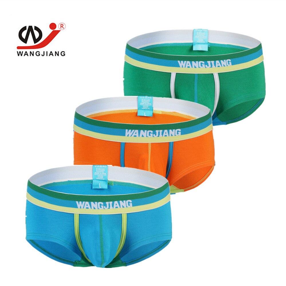 3-PACK Boxer High Quality Brand Mens Underwear Pictures Mens Underwear Brand Boxers Sexy Men For Weight Loss 1015XPJ-3 WJ