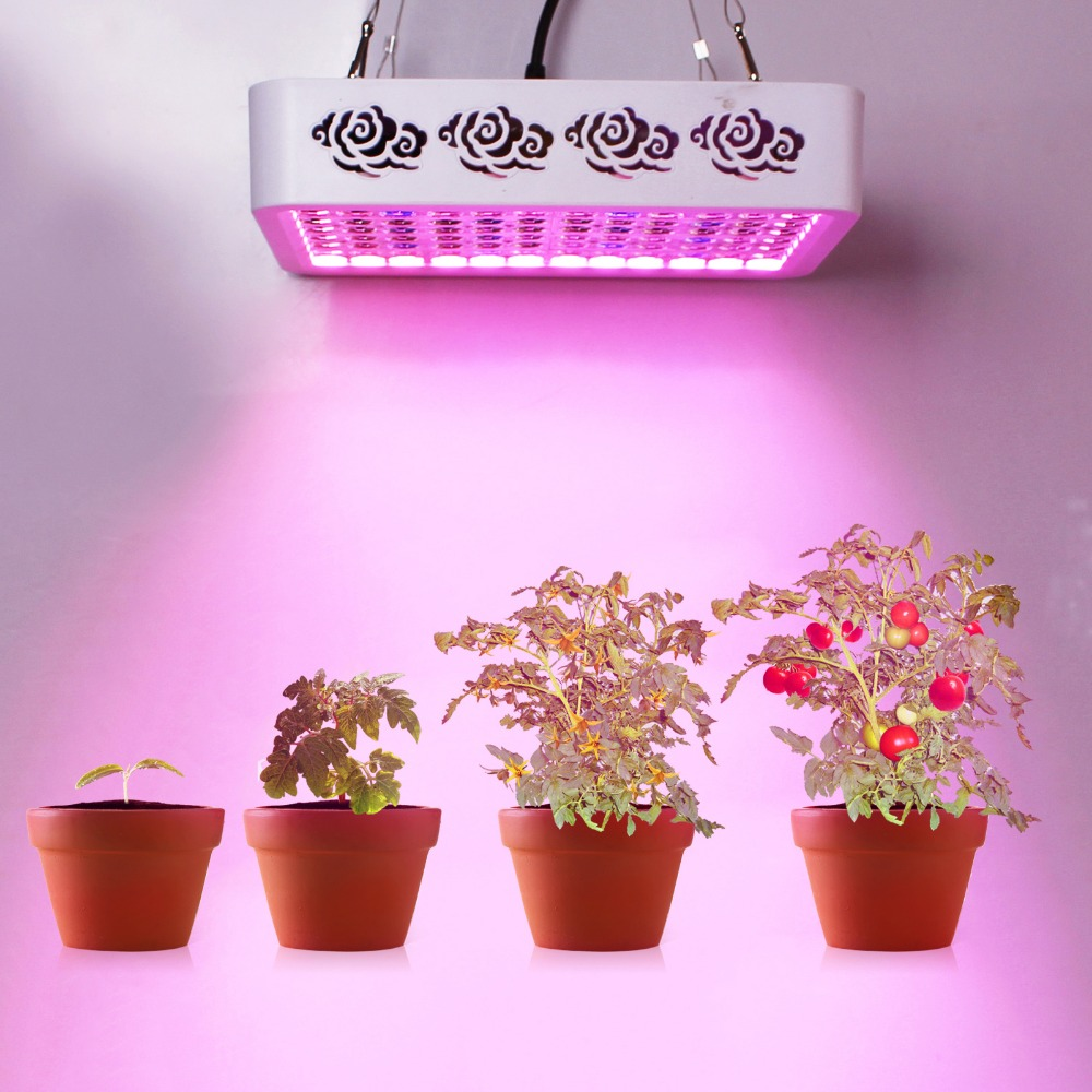 300w Plant Led growing light Clouds design Full Spectrum Enhance photosynthesis for Indoor Garden hydroponic Grow Tent Led Lamp 200w full spectrum led grow lights led lighting for hydroponic indoor medicinal plants growth and flowering grow tent