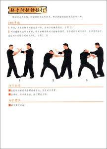 Image 3 - จีน wushu kung fu book: Wing Chun พื้นฐานโดย Ye Wen