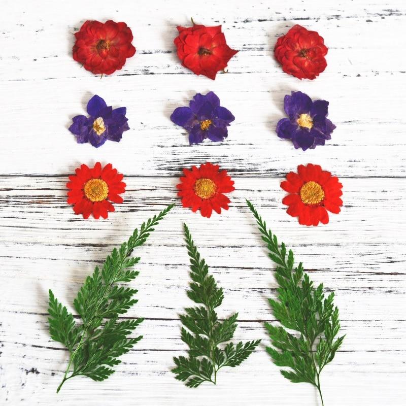 Brieftaschen Und Halter Kerze-zubehör Der Glas Tassen Kerzen Seien Sie In Geldangelegenheiten Schlau Neue Diy Aromatherapie Wachs Getrocknete Blumen Ewige Diy Blume Handgemachte Kerze Getrocknete Blumen Material