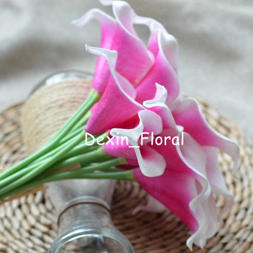 Silk Fuchsia Flowers Gallery Fresh Lotus Flowers
