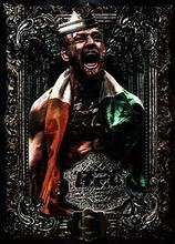Conor McGregor Irish MMA UFC Boxing Super Star 9style Art Wall Decor Silk Print Poster цена 2017
