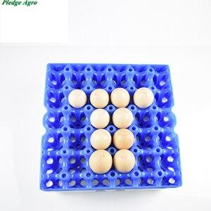 Image 3 - 10 шт куриное яйцо поднос 30 яиц емкость пластиковая транспортировка хранение коммерческий яйца сельскохозяйственное оборудование инструменты