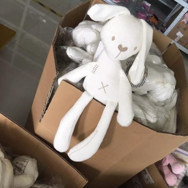 50cm Mamamiya & Papas Baby Rabbit Sleeping Comfort Doll
