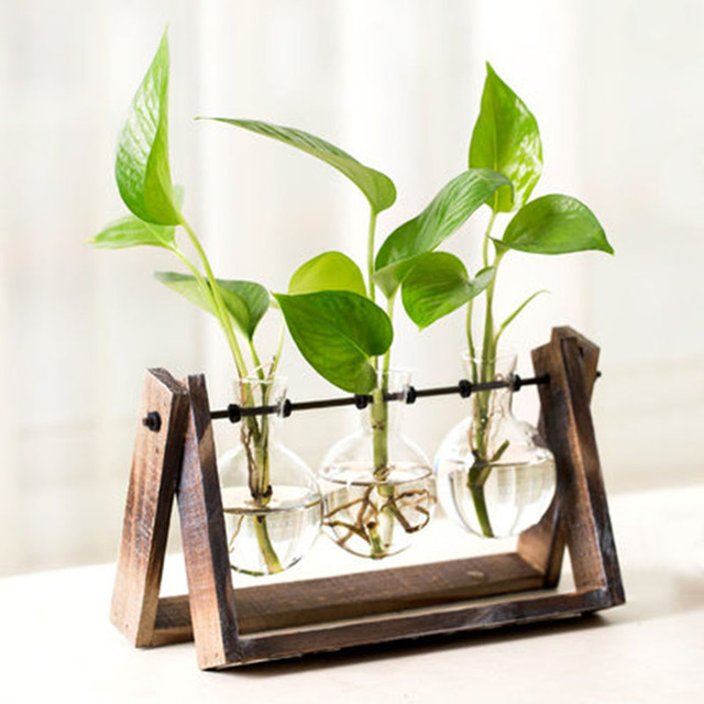 3 types modern style glass tabletop plant bonsai flower wedding 3 types modern style glass tabletop plant bonsai flower wedding decorative vase with wooden tray home junglespirit Images