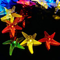 Novedad LED Light-up Juguetes 1 Star Fish Juguete de Cuerda Lámparas para el Partido