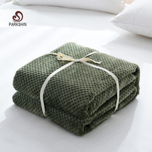 Image 1 - Parkshin Modern Green Flannel Pineapple Blanket Aircraft Sofa Office Adult Use Blanket Car Travel Cover Throw Blanket For Couch
