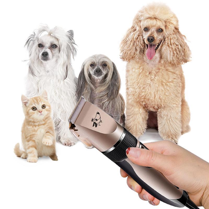 Chiens tondeuses à cheveux professionnel pour animaux de compagnie tondeuse chats toilettage tondeuse à cheveux maquina de cortar pelo para perro hondenhaar