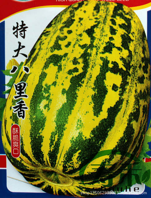King Pali Cantaloupe Melon Seeds Fruit Sugar Content Of 14 Degrees And Strong Ability To Grow About 70 Small Homes In Cabinet Hinges From Home Improvement On Aliexpress Com Alibaba Group There are 53 calories in 1 cup, cubes (5.5 oz) of cantaloupe melons, raw. aliexpress