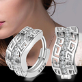 Fashion Lady 925 Sterling Silver Crystal Rhinestone Hoop Earring