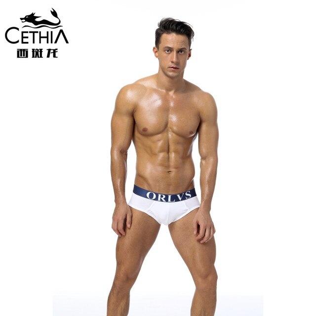 model Sexy gay