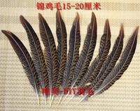 Envío libre! 100 unids DIY vestido/hogar/Ópera China Accesorios 15-20 cm/6-8in naturales faisán cola plumas