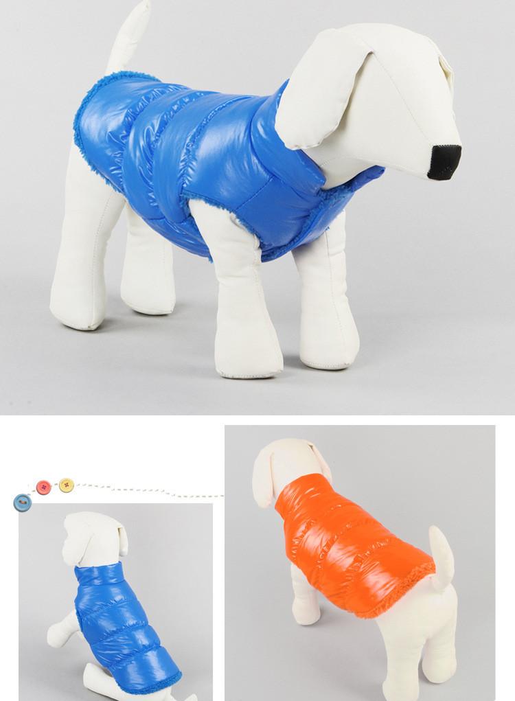 winter dog clothing