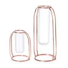 Vases Set of 2 Metal Flower Vase Glass Planter Terrariums Gold Plant Cylinder for Decor Clea