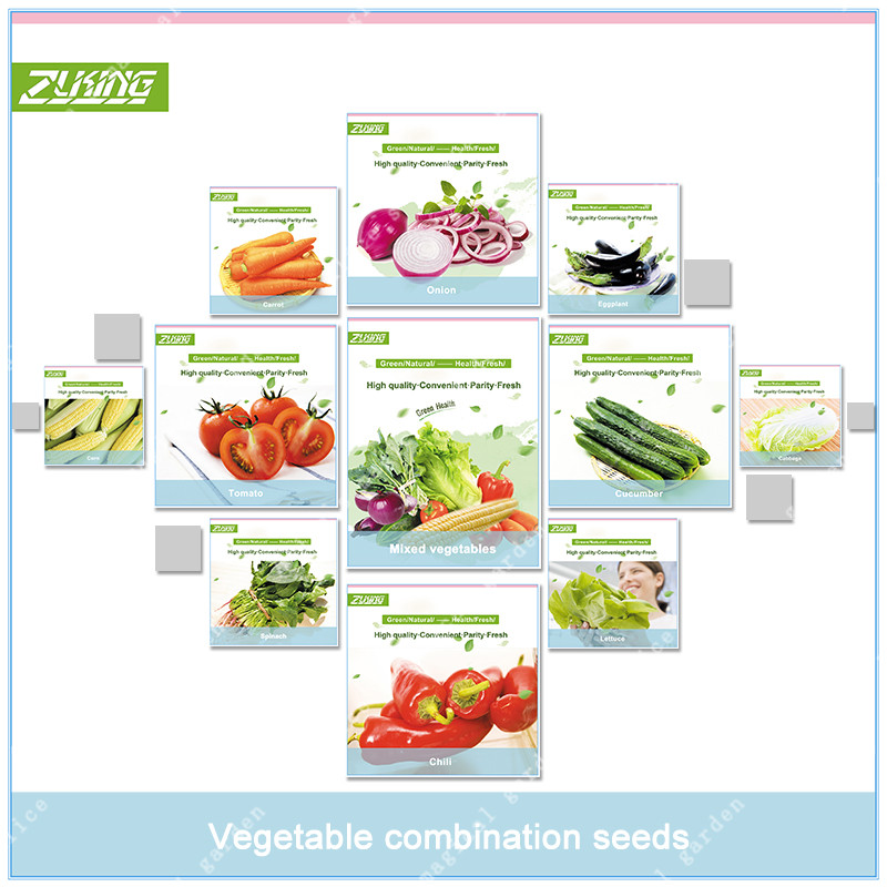 ZLKING 1000 Pcs Vegetable Seeds Combo Pack (Organic) Bonsai Plant Onion Cucumber Tomato Carrot Chili Eggplant Spinash Lettuce ...