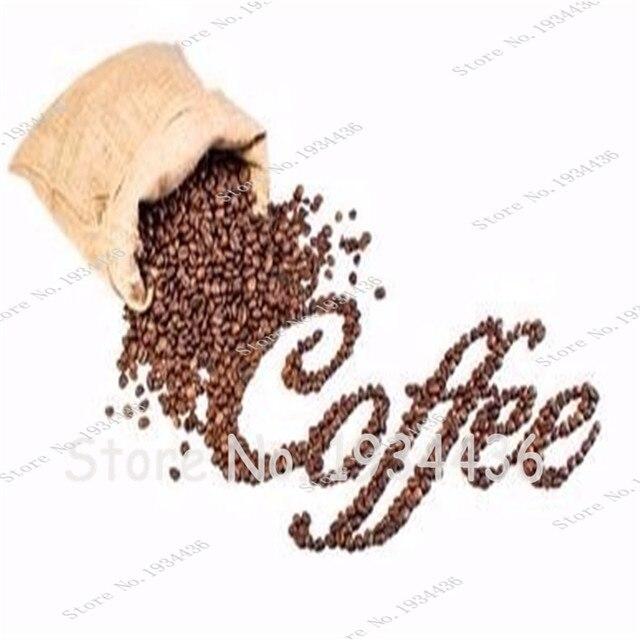 Puro Grão De Café Arábica Coffea Arabica Árvore Bonsai Vasos Ao Ar Livre Fresco-100% Natural Coffeebean 20 pçs/saco
