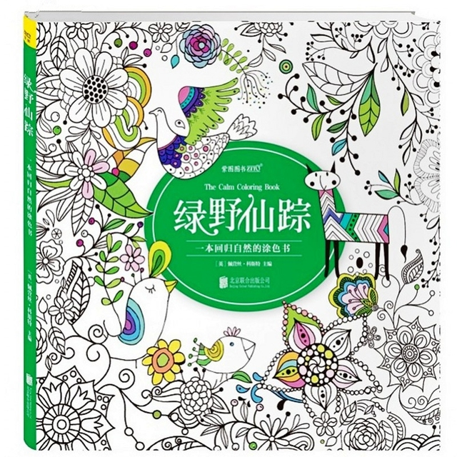 The Wizard of Oz Coloring Book For Children Adults Secret Garden ...