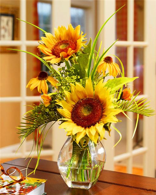 Mini Sunflower Seeds, Dwarf Sunflower Seeds , 50pcs/pack