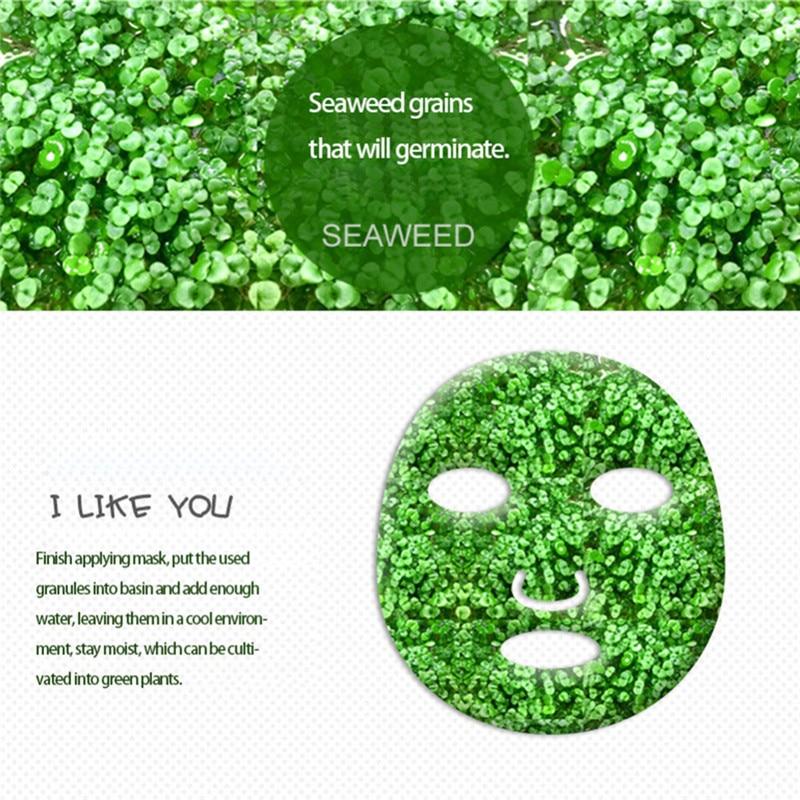 2PCS Pure Seaweed Alga Mask Powder Algae Mask Acne Spots Remove Hyrdating Whitening&Moisturizing Facial Mask Face Mask