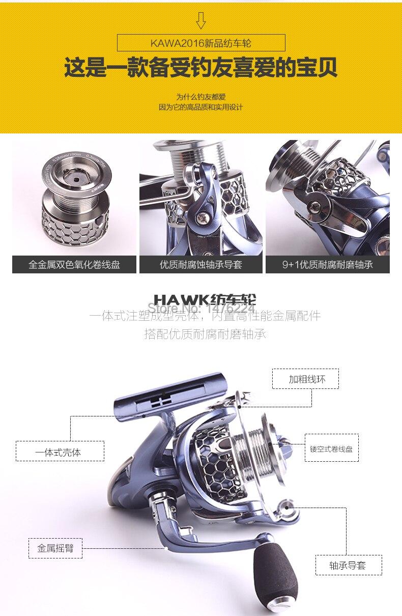 -HAWK-2.jpg