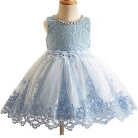 2017 New Flower Girls Dresses For Wedding Embroidered Formal Girl Birthday Party Dress Princess Ball Gown