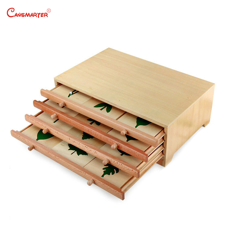 Botany Leaf Cabinet Puzzles Wooden Box Montessori Biological Teaching Toys Education Early Kids Preschool Materials