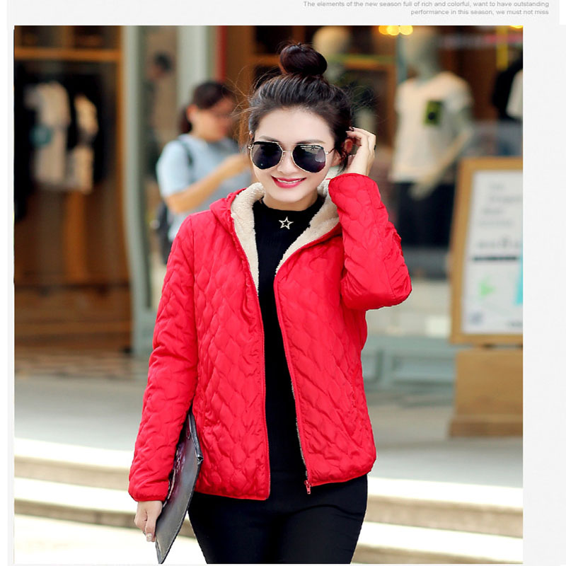 Ladies Padded Coat Promotion-Shop for Promotional Ladies Padded ...