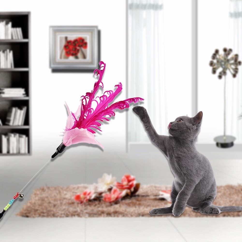 1pcs Pet Cat Toy Cute Design colorful feather Wand Acrylic Toy for kitten cats Products Goods for Cat random color