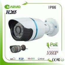H.265/H.264 2MP Full HD 1080P IP Community Cameras POE CCTV Video Digicam Surveillance System, IP66 Waterproof Outside Utilization, Onvif