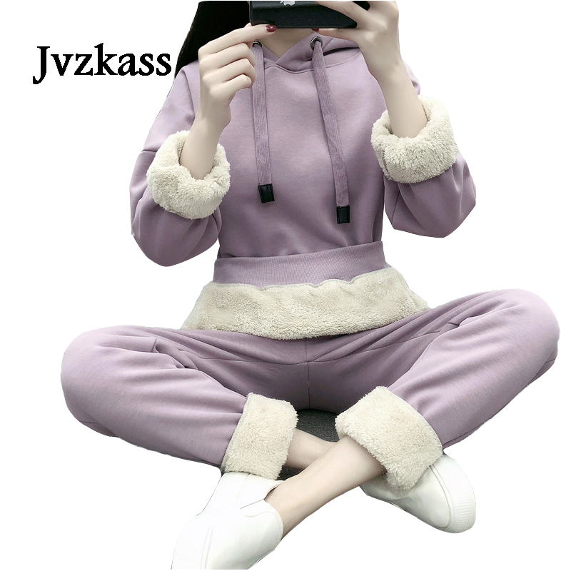 Jvzkass Casual Sports Suit Female 2019 New Autumn And Winter New Plus Velvet Thick Sweater Loose Sportswear Warm Two-piece Z278