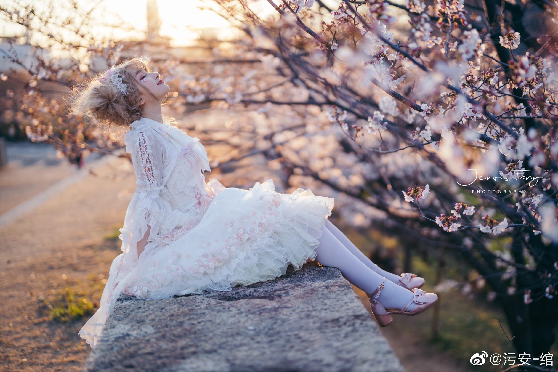 夕阳下,樱花旁,美人间