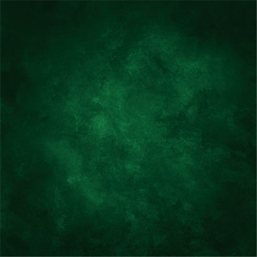10x10ft Dark Green Color Wall Wedding Costume Portrait