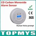 Envío Gratis 50 unids/lote Nuevo Detector de CO con Pantalla LCD EN50291 Sensor de Monóxido De Carbono Envenenamiento Gas Humos Advertencia Sensor de Alarma