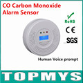 Free Shipping 50pcs/lot New CO Detector with LCD Display EN50291 Poisoning Smoke Gas Sensor Warning Carbon Monoxide Alarm Sensor